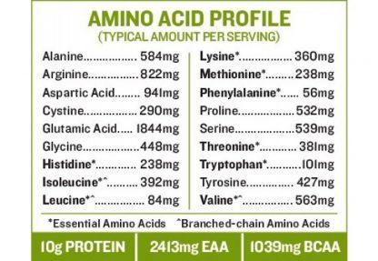 サンフード スーパーフードスムージーミックス含有アミノ酸一覧-スプーン1杯に全てがつまってる