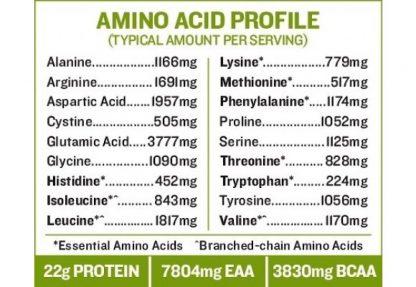 サンフード オーガニック スーパーグリーン&プロテイン含有アミノ酸一覧-グリーンスーパーフードと発芽玄米プロテイン、乳酸菌、酵素をブレンド