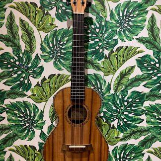 珍しいエレキタイプのハワイアンコアウクレレ。アンプに接続して演奏できます
